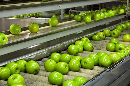 indústria alimentícia - Áreas de Atuação - WOLFER - Automação